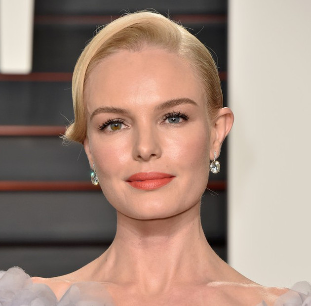 Oscar 2016 Partido Demo Kate Bosworth
