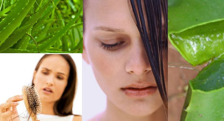 Diferentes maneiras caseiras de cuidar do cabelo: