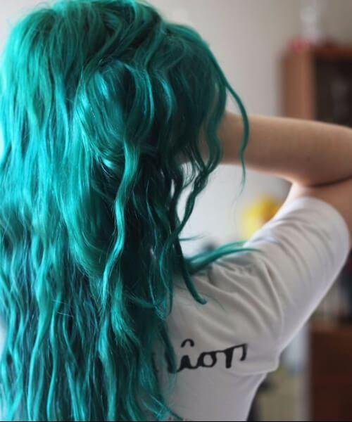 cor do cabelo da cerceta da alga